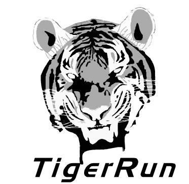 Bandeau flash animé pour Tigerrun