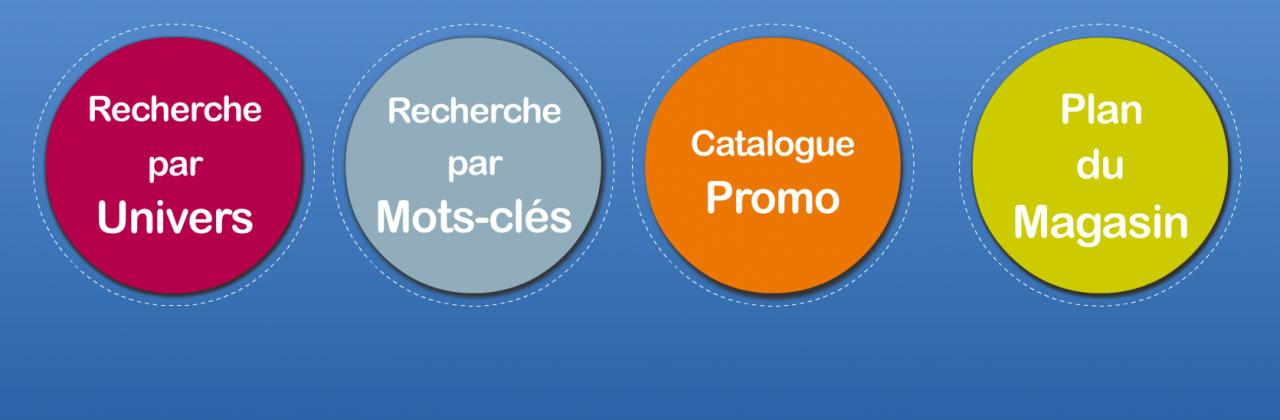 Bornes d'information pour Castorama Rhône-Alpes