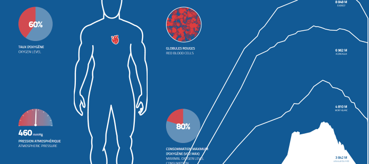 Animation interactive, thème 'Hypoxie'
